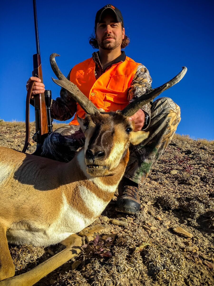 Colorado Hunts - Trophy Elk - Trophy Mule Deer - Antelope - Mt Lion