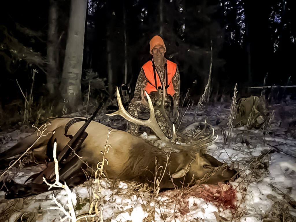 Colorado Elk Hunts Diy And Guided